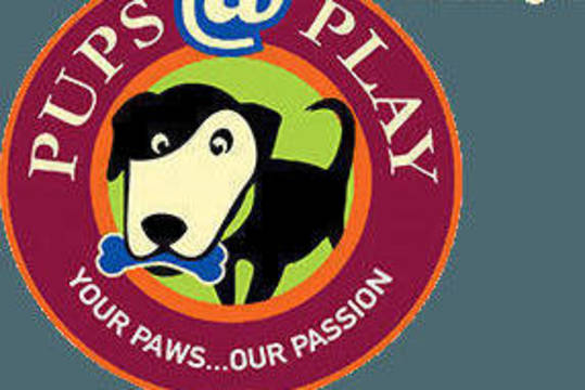 Top story 2b75002168e18156a2d8 pupsatplay logo header