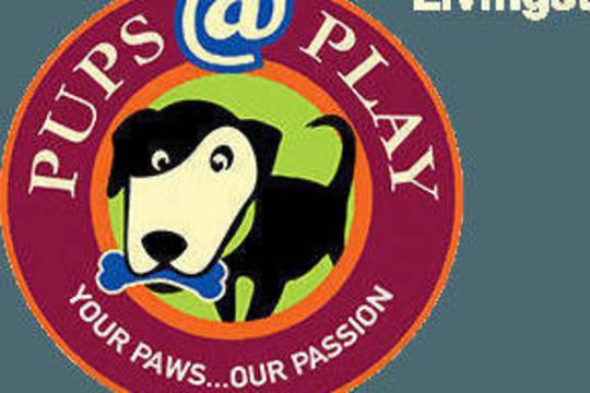 Top story 5dea5c46e73d24b2a503 pupsatplay logo header