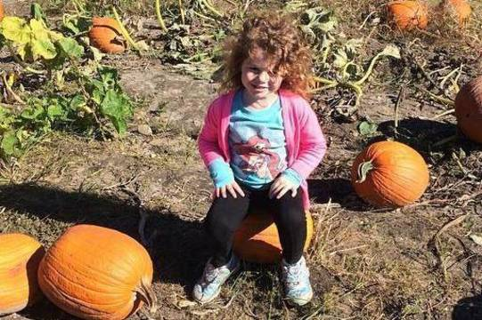 Top story 9b130465660d3fb3a14d pumpkin