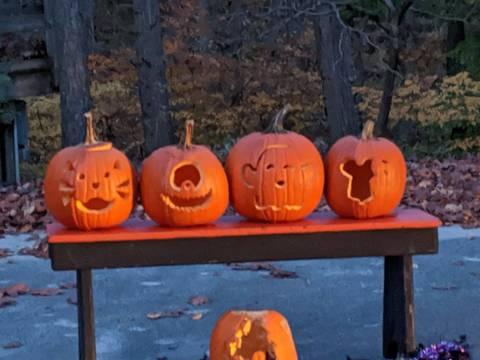 Top story a405081d6eadd49fbf95 pumpkins