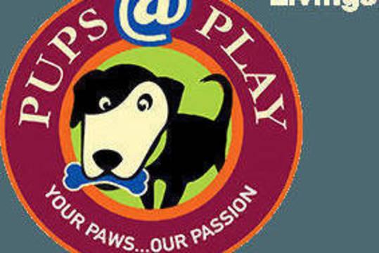 Top story d1a7434f200f19bd470d pupsatplay logo header