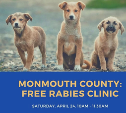 Monmouth County is hosting free drive-thru rabies clinic.