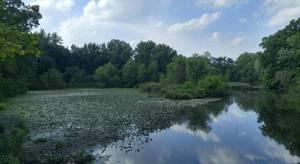 Join Community Members in Clark Reservoir Clean-Up