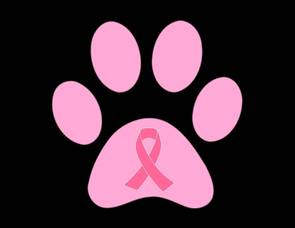 Carousel image 91d2ef310dd204c55fd0 real panthers wear pink