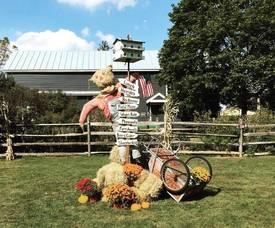 Carousel image b0177ae79544fc13e376 rha country fair which way sign