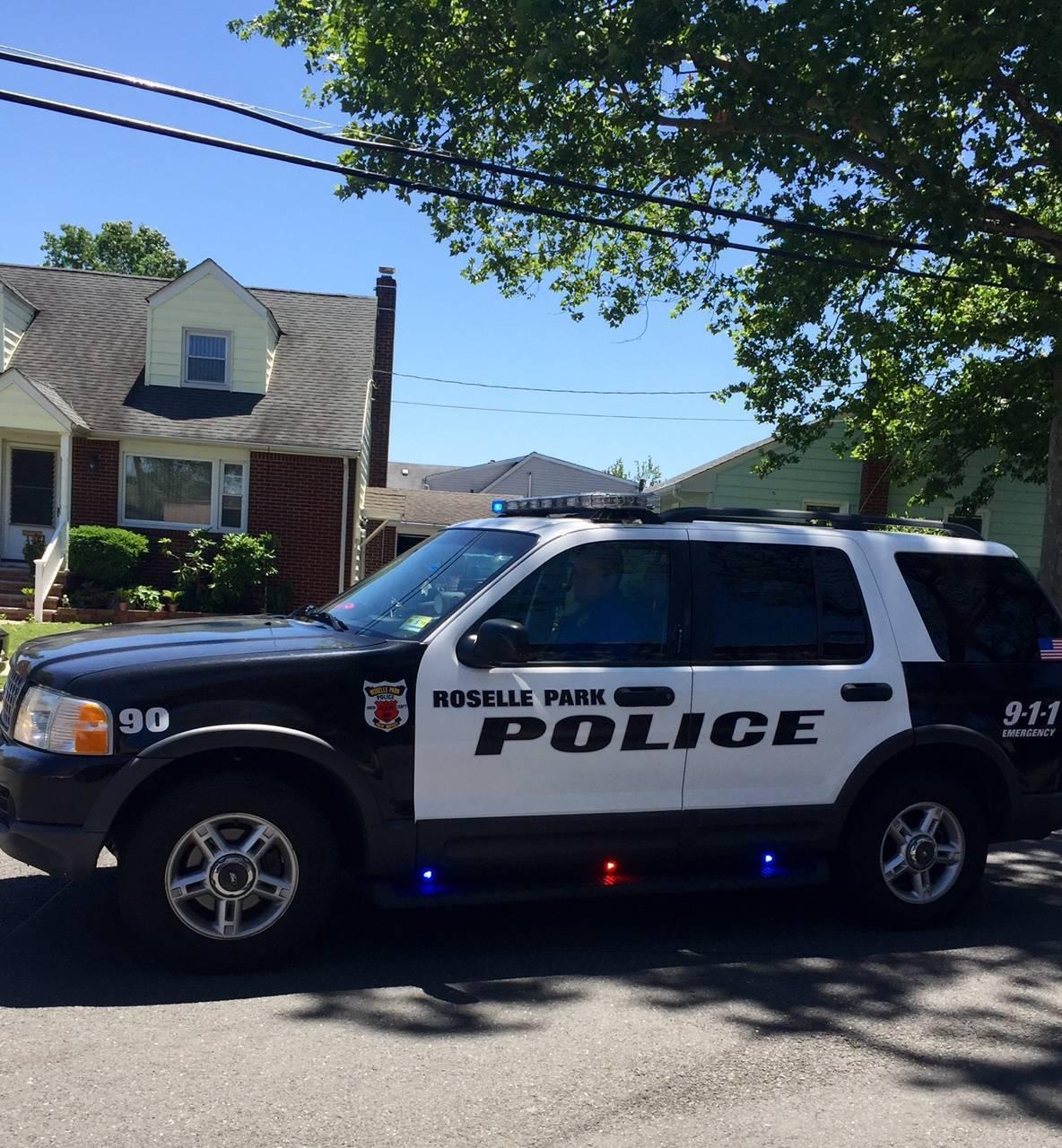 Roselle Park Police Car.jpg