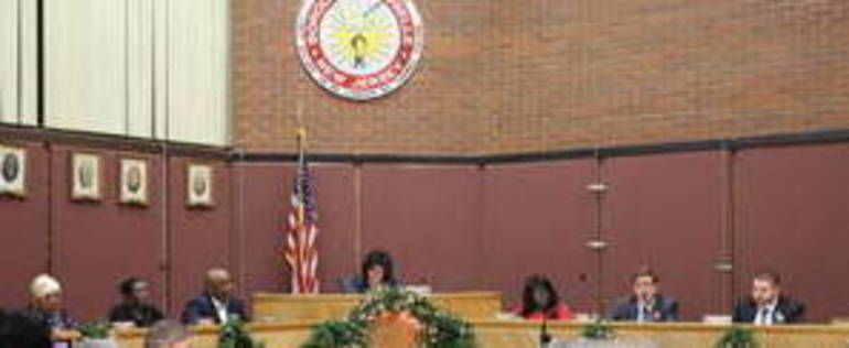 Roselle Council general group.jpg