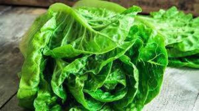 Top story a666b432702752d06543 romaine lettuce