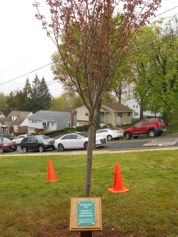 City Plants Tree In Honor Of Fallen Firefighter Dennis Walker
