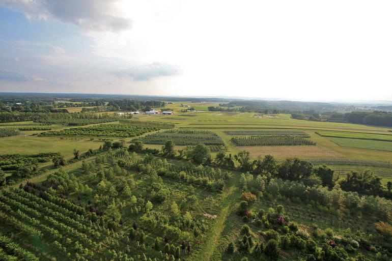 rutgers farm.jpg
