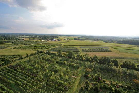 Top story 189a9d98bbebdf213894 rutgers farm
