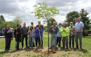 Robbinsville Celebrates Arbor Day with Tree Planting at Miry Run