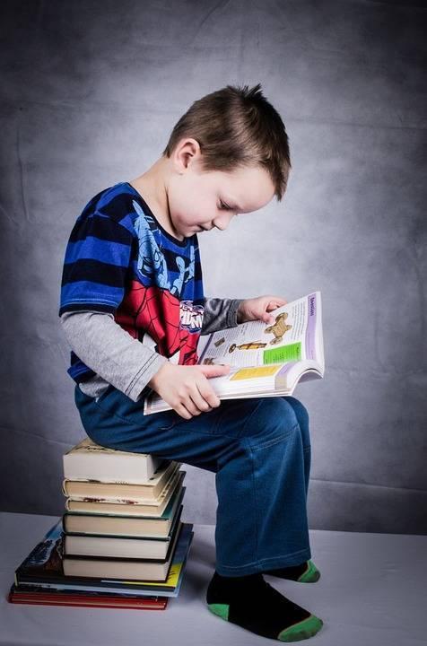 school child-315049_960_720.jpg