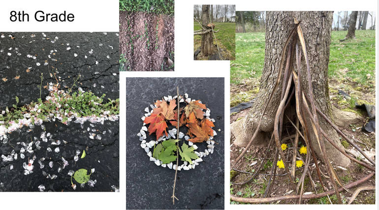 Cedar Hill Prep Students create Earth Art Sculpture and host Landscape Virtual Exhibit