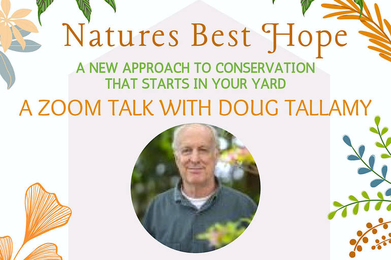 'Nature's Best Hope' Author Doug Tallamy Speaks in Virtual Event Apr. 26