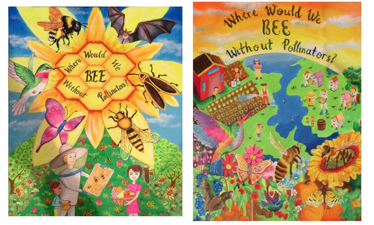 Livingston's Sun Sisters Earn First Place in Statewide Conservation Poster Contest