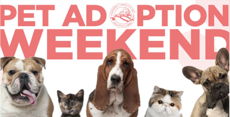 Pet Adoption Weekend at the Union Animal Shelter, May 1 and 2