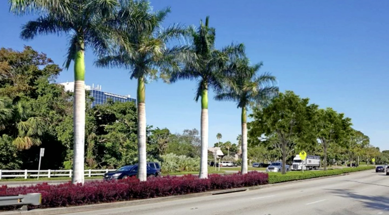 Coral Springs Approves New Landscaping Project on University Drive For $212,600