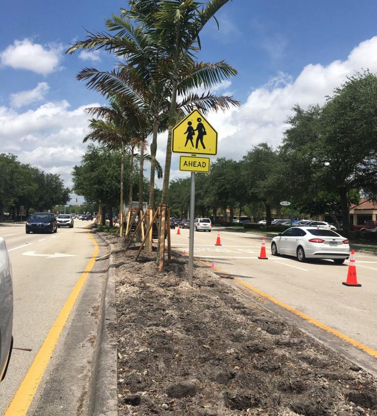 Median strip renovation on University Drive in Coral Springs