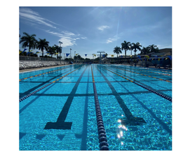 Swimming Lanes Reopen, In-Person Classes Resume, And More News From Coral Springs Parks And Recreation