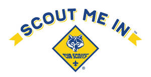 Carousel image 72c028a25ab1e64e9b62 scout me in logo