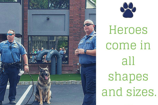 Top story 8acb25c1911ee03a9178 screen shot 2019 03 13 at 11.51.23 am