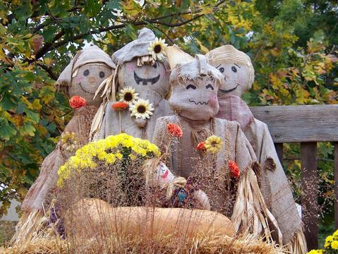 Top story e567e3b26531c6a614de scarecrows 200069