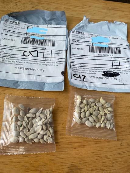 Top story aa765c2fb1d51efd8b8d seeds china
