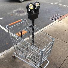 Carousel image 69878e820cf027268630 shopping carts in the wild oct 28 2018