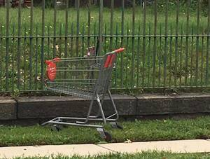 Carousel image 8257c8a9f205a197f643 shopping cart in the wild nutley sept 2 2018 a