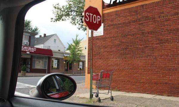 Top story 3ce5a40a398b86b78519 shopping cart in the wild nutley aug 20 2018