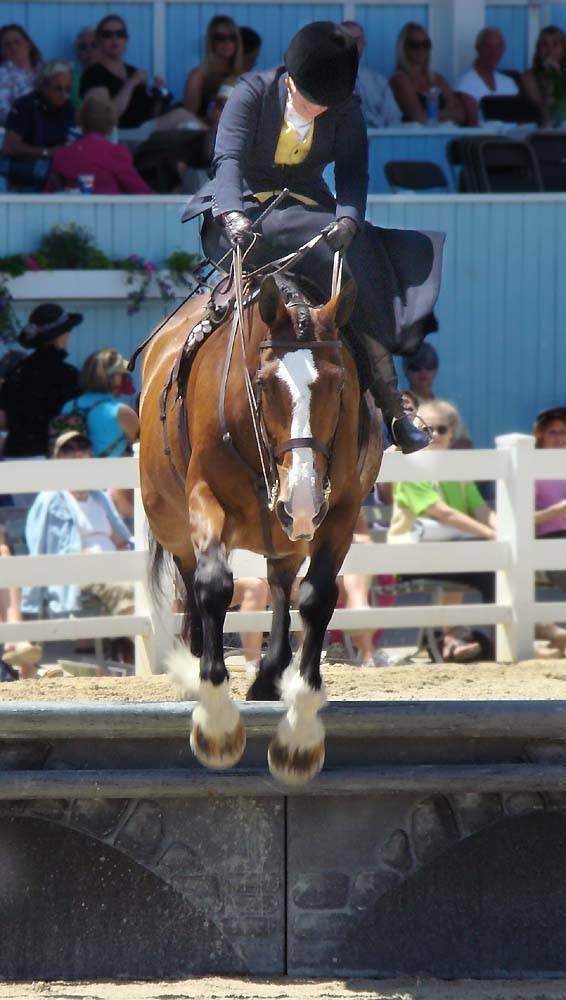 Lower Merion  Devon Horse show Sidesaddle_jumping_devon_pa.jpg