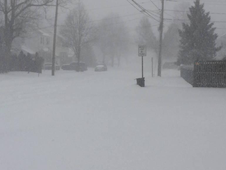 snow storm 1-23-16 2.jpg