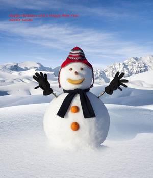 Carousel image cf1f165712c684a12da8 snow man small4757187large