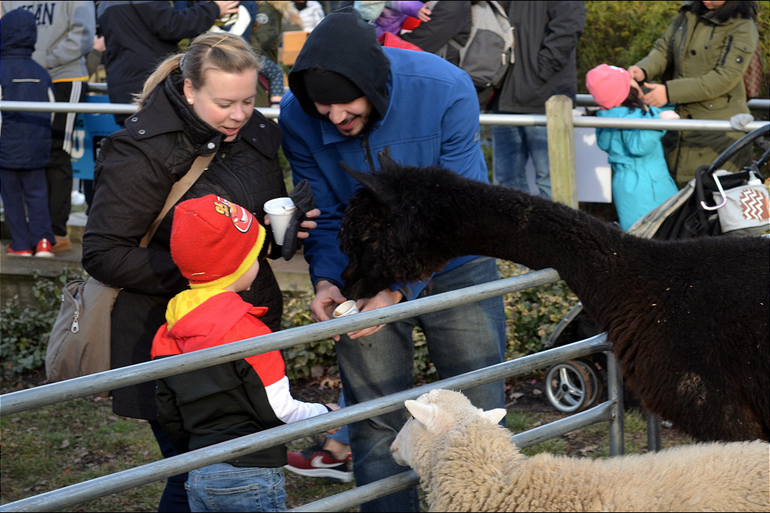 SPX5 - Petting Zoo in Scotch Plains.png