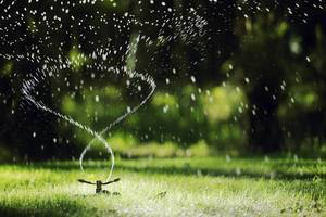 Sprinkler System on the Fritz? Tips and Tricks for What to Fix and When to Call