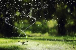 Carousel image 2a66fec3c21481472f71 sprinkler