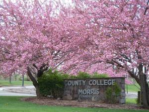 County College of Morris Ranks in the Top 1.8 Percent of Community Colleges in the United States