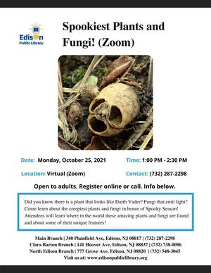Carousel_image_8228521a01b9372826ef_spookiest_plants_and_fungi