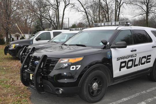 Top story 95c9f4f2f6b9be00054b springfield police
