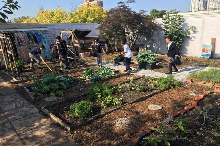 Students_Garden.jpg