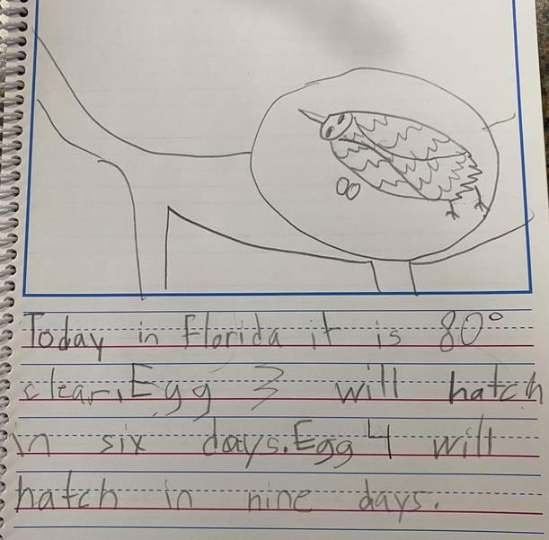 Student 1 writing.jpg