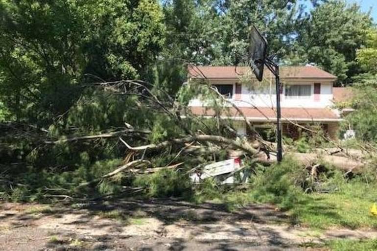 storm damage 1.JPG
