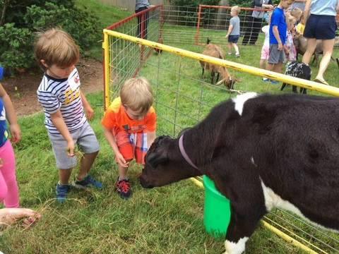 Top story 0d87f95f1cc2d8c5bbd6 st. paul s petting zoo 2