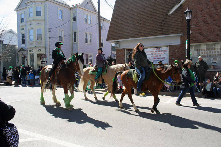 Sussex St Pats Horses06.JPG