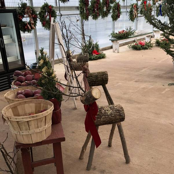 Christmas Festivities at Suydam Farms