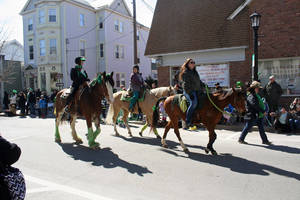 Carousel image 1343c640bfe4e0a0bda1 sussex st pats horses06