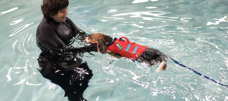 swimming-personal.jpg