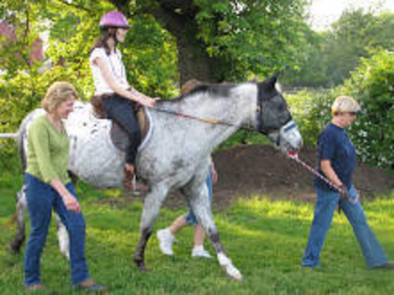 Volunteers Needed for therapeutic riding program