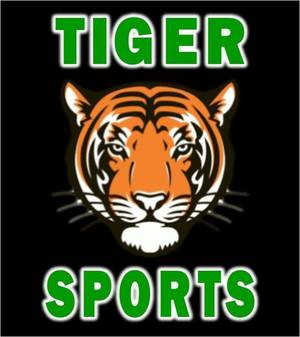 Carousel image 3de8b23a6f0b338f85be tiger sports logo